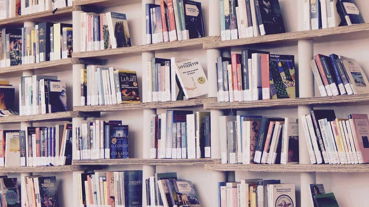 מדף ספרים